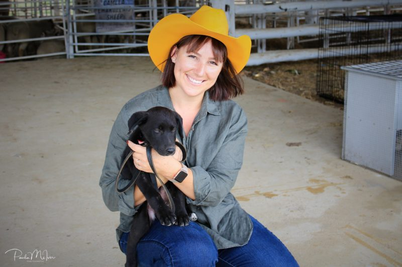 Cuddle a puppy at our animal farm