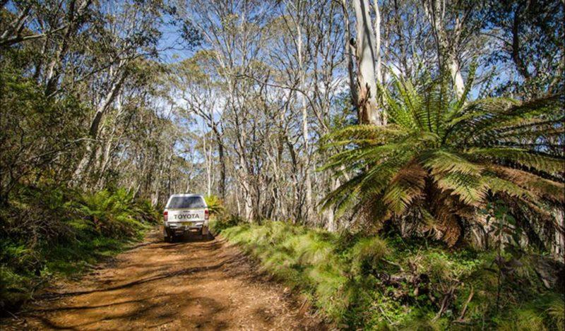 Barrington trail