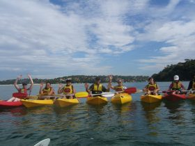 People in kayaks rafted up on a tour at Bundeena beach