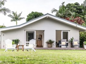 Beachwood - Byron Bay - Back Yard