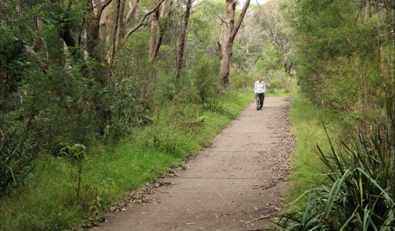 Bellamy fire trail