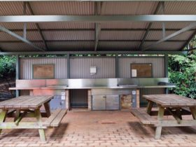 Picnic tables and barbecues at Bellbird campground. Photo: Rob Cleary.