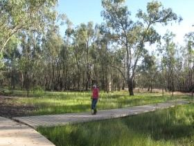 Ben Scott Memorial Bird Trail