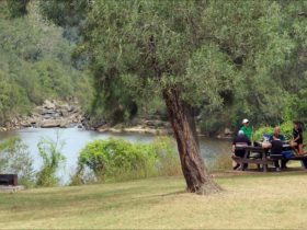 Bents Basin Road picnic area