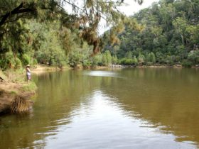 Nepean River, Bents Basin State Conservation Area. Photo: John Yurasek
