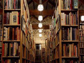 Berkelouw Books Paddington