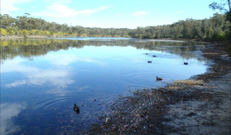 Berrara Creek