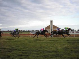Berrigan and District Race Club