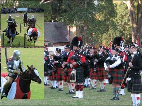 Berry Celtic Festival - Jousters & Bands