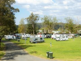 Berry Showground Camping