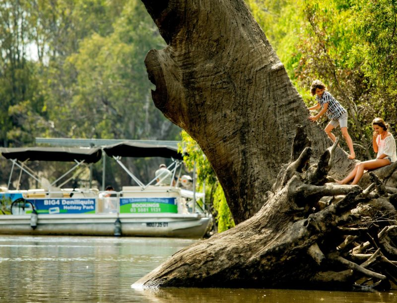 Hire the Pontoon Boat at BIG4 Deni and see the beautiful Edward River at your leisure