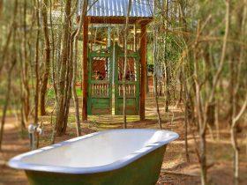 Billabong Moon - Treetops Lodge