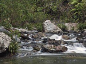 Urumbilum River, Bindarri National Park. Photo: Shane Ruming