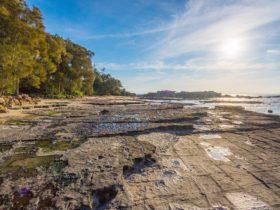 Bindijine Beach