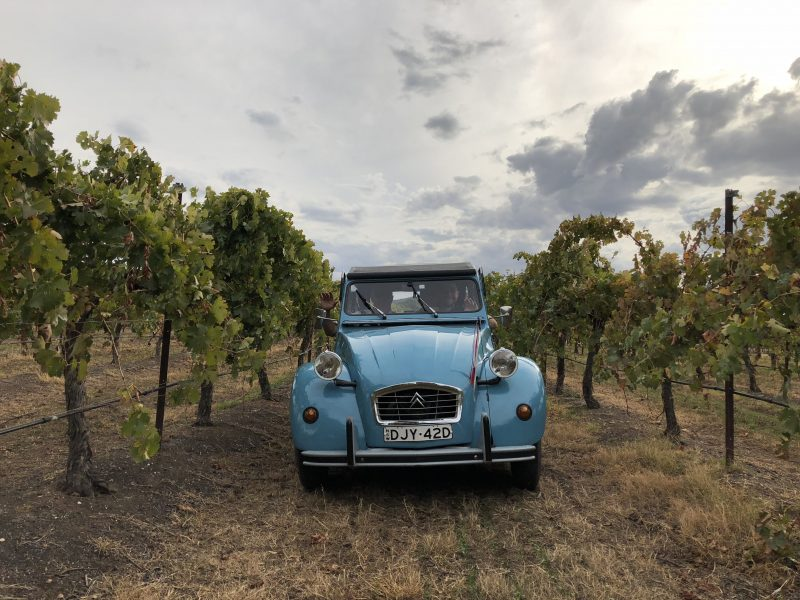 """Take a wine tour in a french 2cv called """"Claude"""""""
