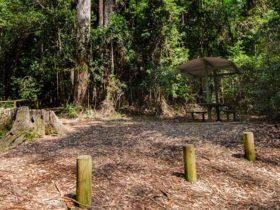Bird Tree picnic area