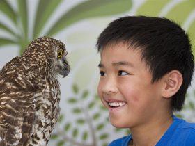 Birds Australia Discovery Centre