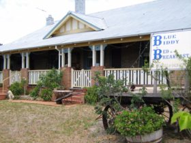 Blue Biddy Bed and Breakfast