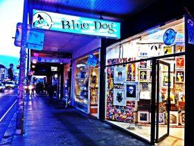 Blue Dog Posters 311 King Street Newtown www.bluedogposters.com.au