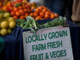 Blue Knob Farmers Market