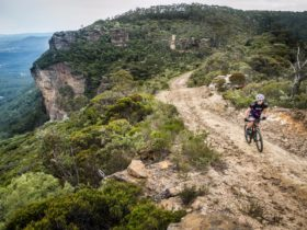 Blue mountain bikes australia