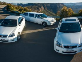 Two white sedan cars and a stretch limousine in front of a mountain view