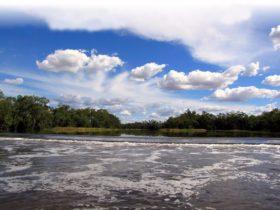 Bogan River