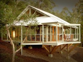 Bombah Point Eco Cottage thru Trees