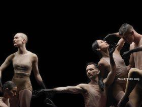 Sydney Dance Company | The Art House