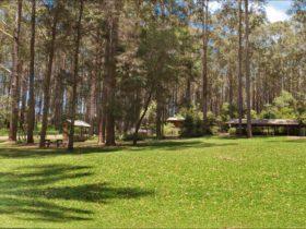 Bongil picnic area