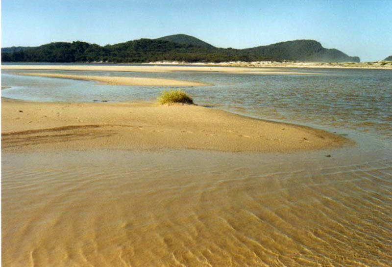Bongos Beach Bungalow
