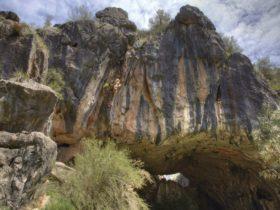 Borenore Karst Conservation Reserve