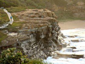 Bouddi Coastal Walk, Bouddi National Park. Photo: John Yurasek