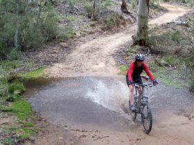 Boyd River Loop Mountain Biking, Kanangra National Park. Photo: J Bros/NSW Government