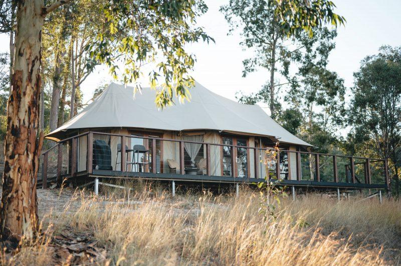 External view of the Safari Tent