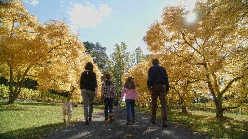 The Hoskins family at Brangayne of Orange Vineyard