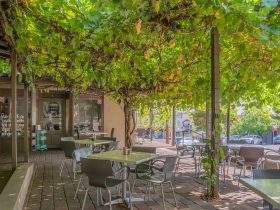 Breakout Brasserie Cafe Cowra outdoor seating under the grapevine