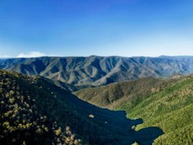 Budds Mare Lookout, Oxley Wild Rivers National Park. Photo: Gerhard Koetner/NSW Government