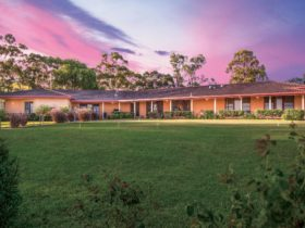 Perfect relaxing getaway in Lovedale, Hunter Valley