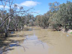 Billabong Creek
