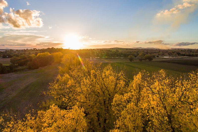 Cabonne sunset