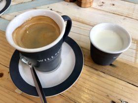 Cafe Treeo
