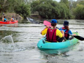 Canoeing Murray River