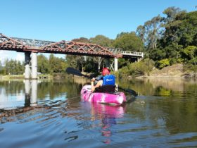 Canoeing on the Williams River Clarence Town