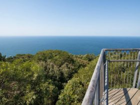 Cape Hawke lookout