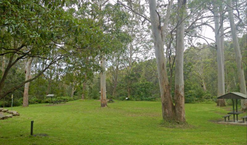 Carter Creek picnic area