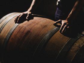 Winemaker rolling barrel