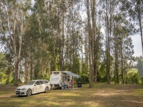 A couple sit outside their caravan at Cattai campground in Cattai National Park, on the Hawkesbury R