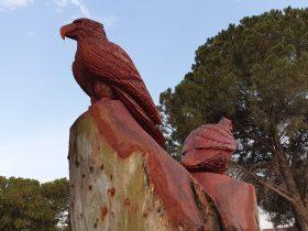 Malleefowl behind eagle