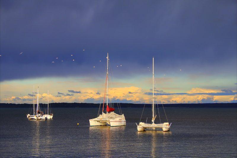 Chappies Callala Bay - Dusk